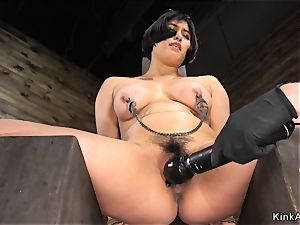 chubby chesty chinese pussy played in frogtie